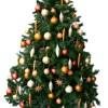 Buckinghamshire Office christmas tree rental