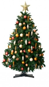 Buckinghamshire Office christmas tree rental