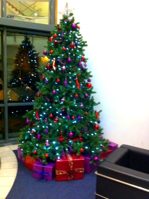 Christmas Tree Hire in Reading Offices